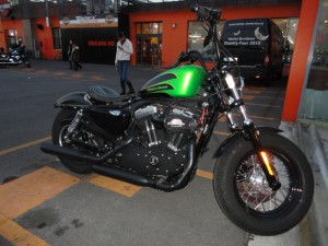 20101029 GreenIron15