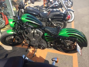 20140401 GreenIron07